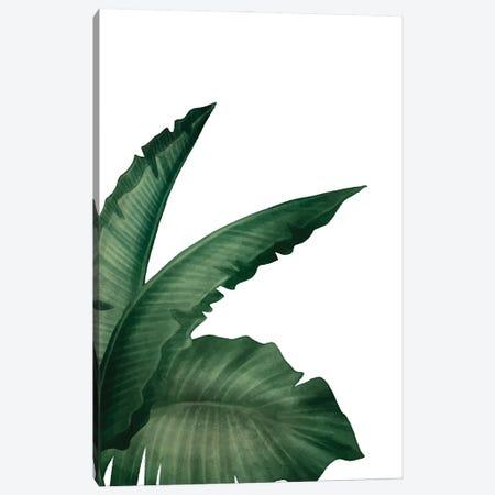 Palms I Canvas Print #KAL703} by Kimberly Allen Canvas Print