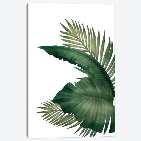 Palms III Canvas Print #KAL705} by Kimberly Allen Canvas Art