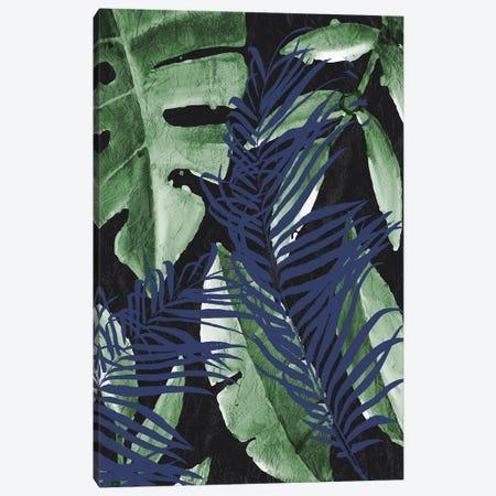 Tropic Palms I Canvas Print #KAL716} by Kimberly Allen Art Print