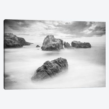 Ocean Dreams Canvas Print #KAL72} by Kimberly Allen Canvas Art