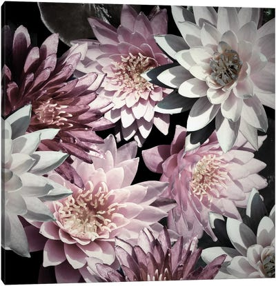 Plum Florals Canvas Art Print