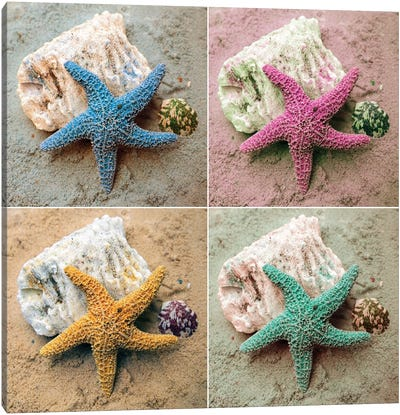 Colorful Starfish Canvas Art Print