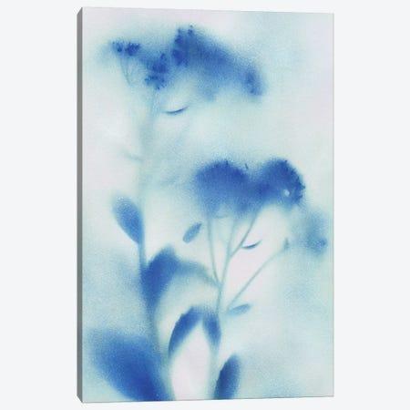 Misty Meadow Flowers I Canvas Print #KAT19} by Katrina Craven Canvas Wall Art