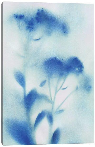 Misty Meadow Flowers I Canvas Art Print