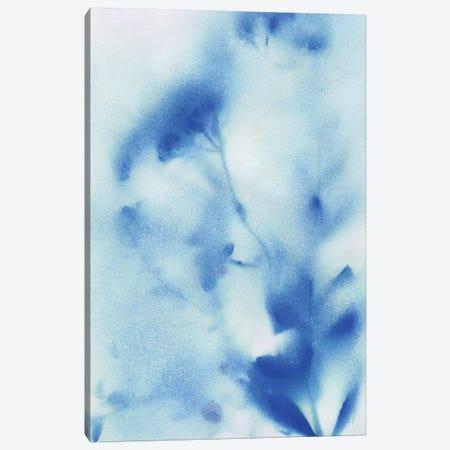 Misty Meadow Flowers II Canvas Print #KAT20} by Katrina Craven Art Print