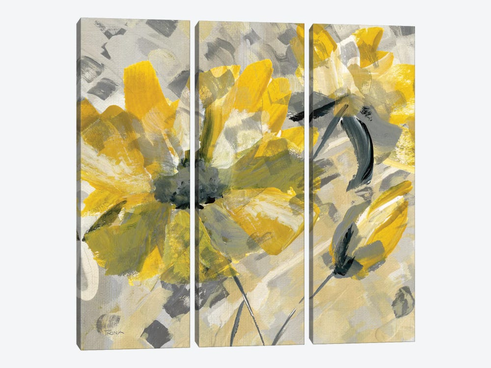 Buttercup I by Katrina Craven 3-piece Canvas Artwork