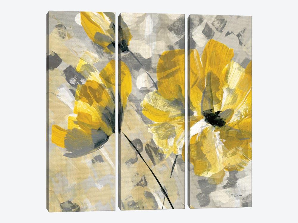 Buttercup II by Katrina Craven 3-piece Canvas Print