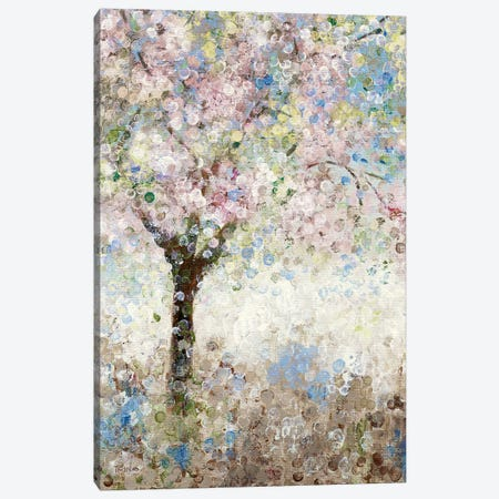 Cherry Blossoms I Canvas Print #KAT58} by Katrina Craven Canvas Art