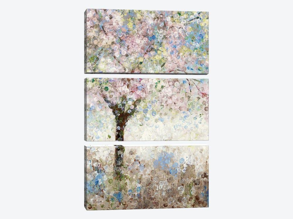 Cherry Blossoms I by Katrina Craven 3-piece Art Print