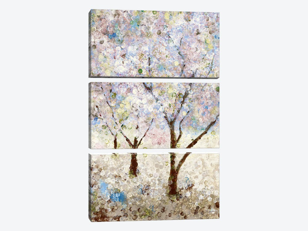 Cherry Blossoms II by Katrina Craven 3-piece Canvas Artwork