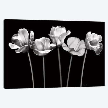 Tulips at Night 3-Piece Canvas #KAT67} by Katrina Craven Canvas Wall Art