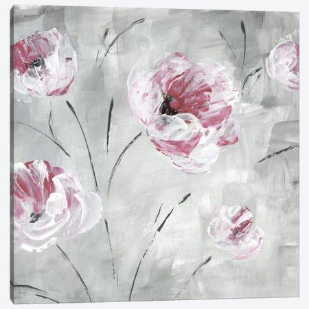 Blush Bloom II Canvas Print #KAT69} by Katrina Craven Canvas Print