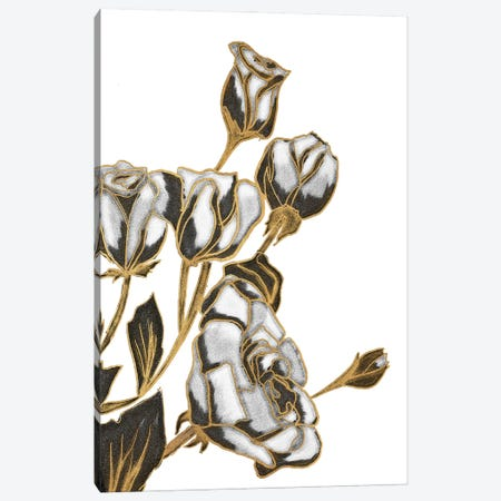 Black, White and Gold Roses Canvas Print #KAW12} by Kali Wilson Canvas Art Print