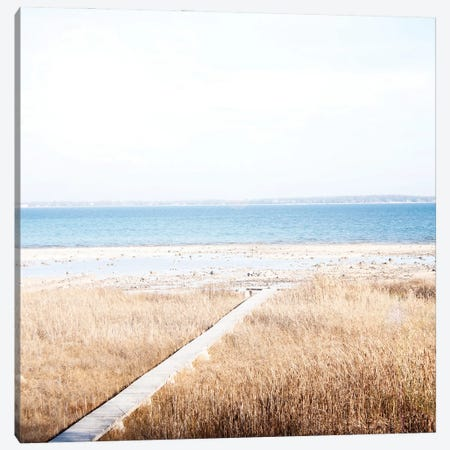 Grassy Shore Canvas Print #KAW14} by Kali Wilson Canvas Artwork