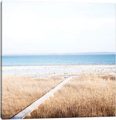 Grassy Shore Canvas Art Print
