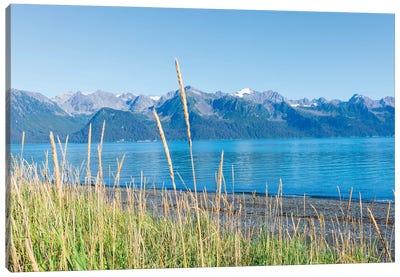 Alaskan Shorelines Canvas Art Print