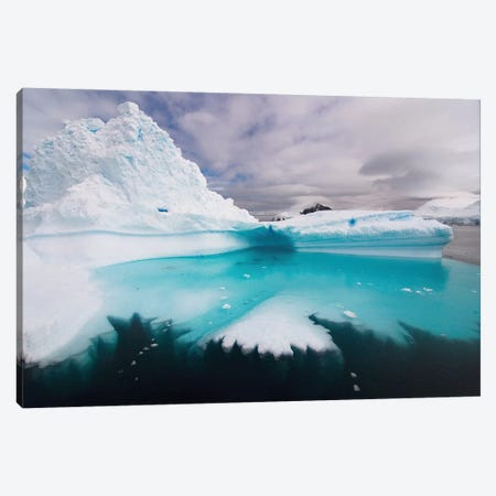 Floating Iceberg, Southern Ocean Canvas Print #KAZ1} by Steve Kazlowski Canvas Artwork