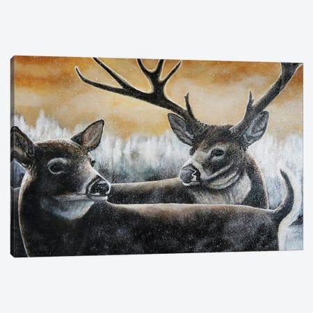Shimmer Feelings Canvas Print #KBA58} by Karin Brauns Canvas Print