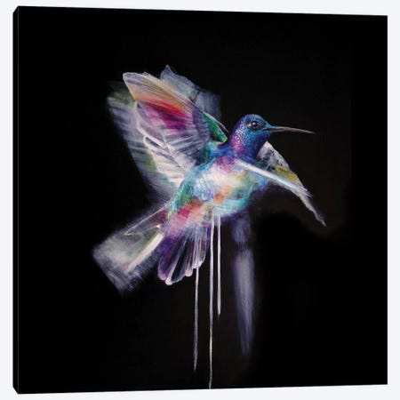 Humming Bird Canvas Print #KBE14} by Kerry Beall Canvas Art