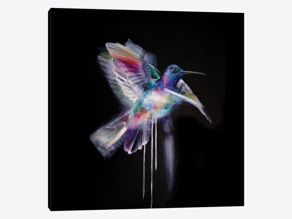 Humming Bird by Kerry Beall 1-piece Canvas Print