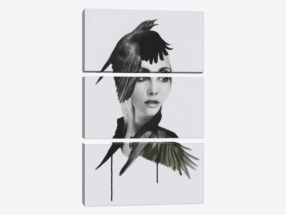 Morrigan by Kerry Beall 3-piece Art Print