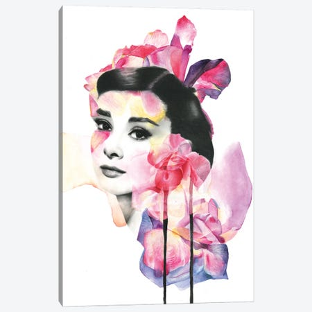 Pink Hepburn Canvas Print #KBE19} by Kerry Beall Canvas Art Print