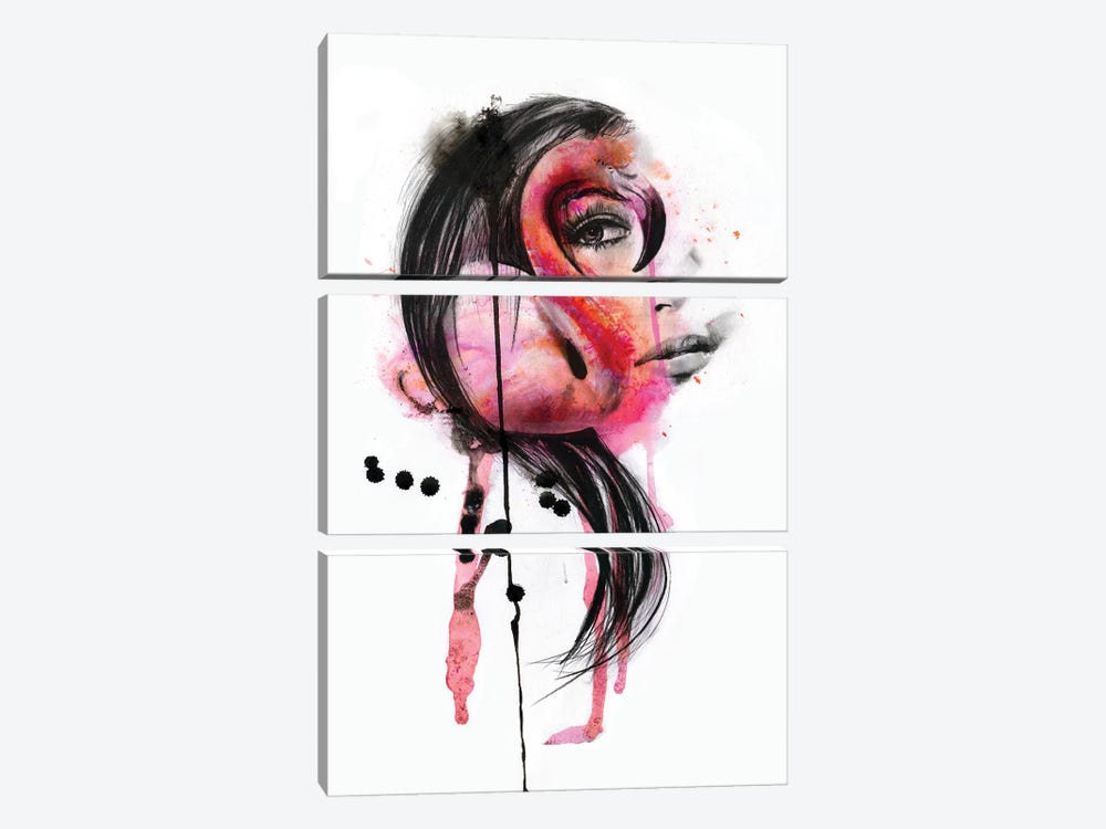 Pink Lady by Kerry Beall 3-piece Canvas Artwork