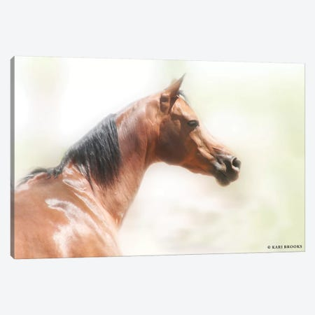 Rose III Canvas Print #KBK11} by Kari Brooks Art Print