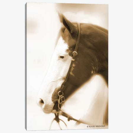Sepia Dream Canvas Print #KBK18} by Kari Brooks Art Print