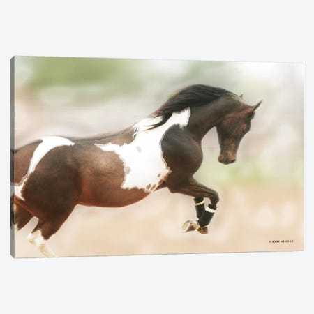 A Wild Kookie Canvas Print #KBK26} by Kari Brooks Canvas Print