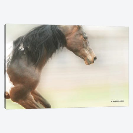 Leap of Faith Canvas Print #KBK30} by Kari Brooks Canvas Art Print