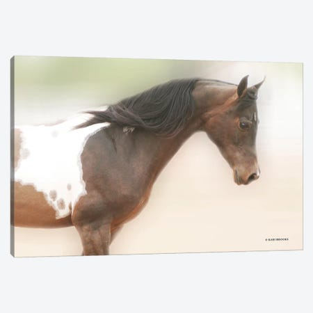 Painted Beauty Canvas Print #KBK31} by Kari Brooks Art Print