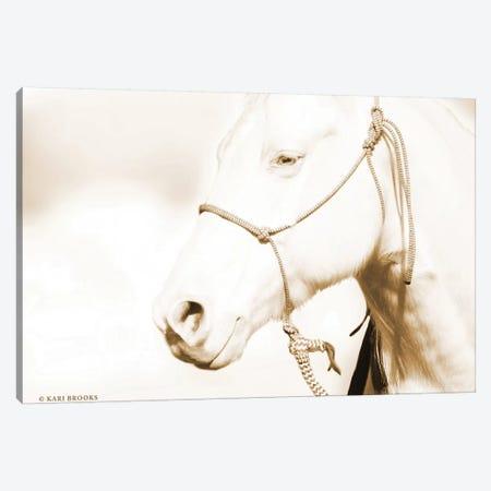 Sepia Medicine Man Canvas Print #KBK35} by Kari Brooks Canvas Artwork