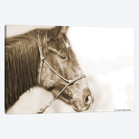 Sepia Thunder Canvas Print #KBK36} by Kari Brooks Canvas Art