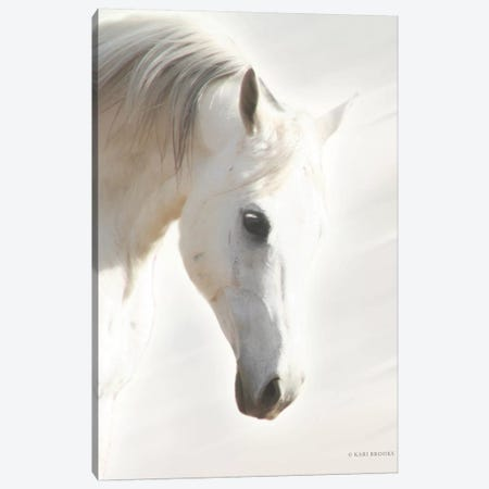 Pegasus I       Canvas Print #KBK37} by Kari Brooks Canvas Artwork
