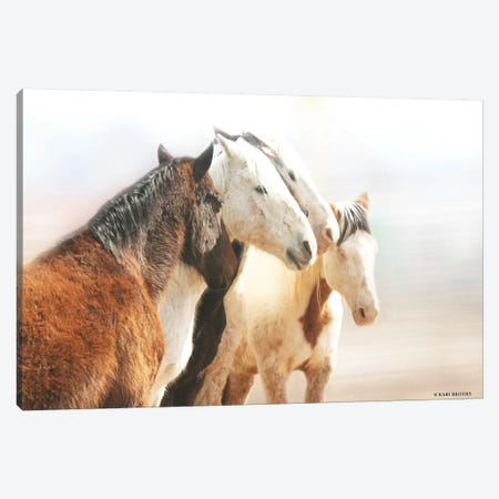 The Gathering      Canvas Print #KBK39} by Kari Brooks Canvas Print