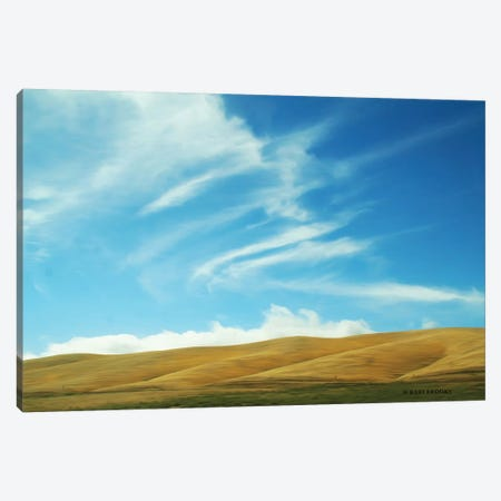California Sky Canvas Print #KBK3} by Kari Brooks Canvas Print