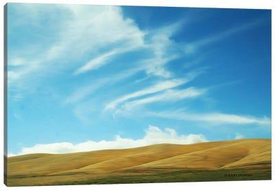 California Sky Canvas Art Print