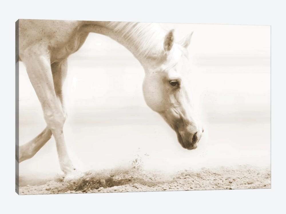 Trail Horse Sepia by Kari Brooks 1-piece Art Print