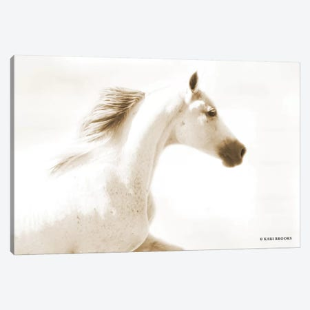 Dash I Canvas Print #KBK4} by Kari Brooks Canvas Artwork