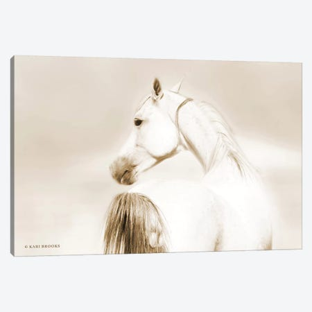 Dash II Canvas Print #KBK5} by Kari Brooks Canvas Art