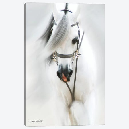 Dream Horse Canvas Print #KBK6} by Kari Brooks Canvas Wall Art