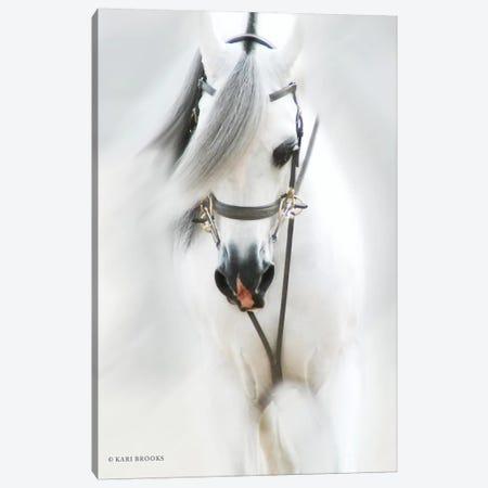 Dream Horse Canvas Print #KBK6} by Kari Brooks Canvas Wall Art