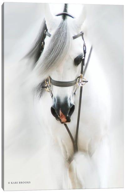Dream Horse Canvas Art Print