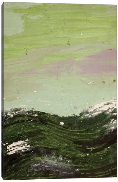 Murky Waters Canvas Art Print