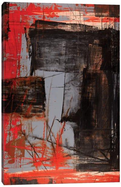 Observer Canvas Art Print