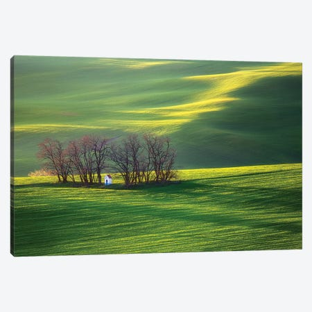 Fields I 3-Piece Canvas #KBR2} by Krzysztof Browko Canvas Art Print