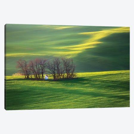 Fields I Canvas Print #KBR2} by Krzysztof Browko Canvas Art Print