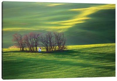 Fields I Canvas Art Print