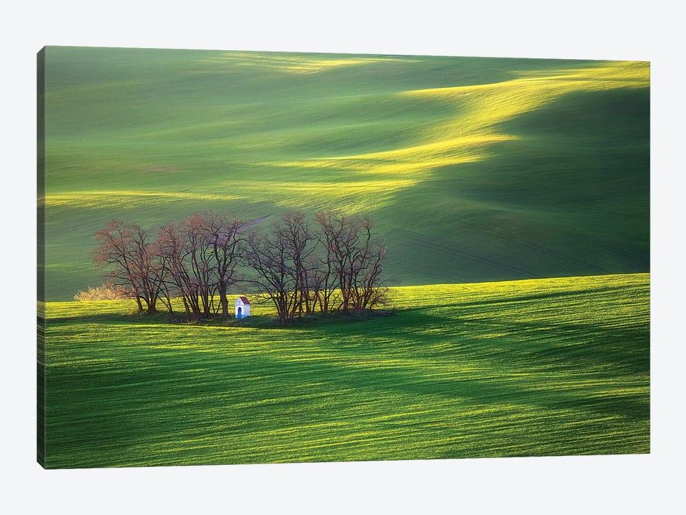 Fields I by Krzysztof Browko 1-piece Canvas Print